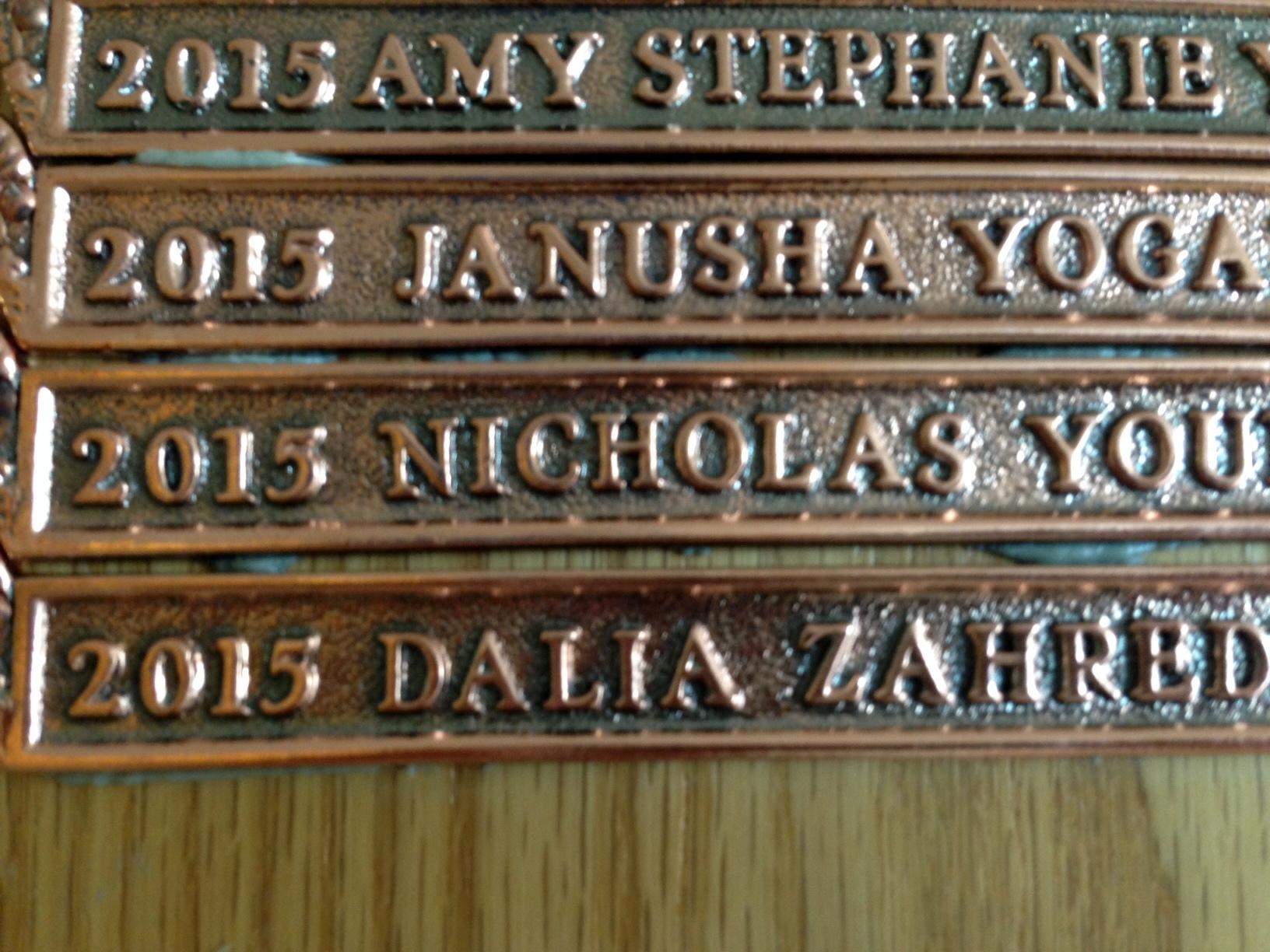 bronzebars